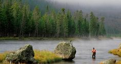 Fly Fishing in Jackson Hole, Wyoming