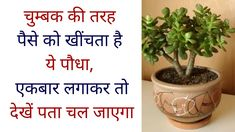 17 Trendy Home Improvement Diy Thoughts Vedic Mantras, Hindu Mantras, Hindu Quotes, Positive Energy Quotes, Motivational Picture Quotes, Healthy Skin Tips, Beautiful Flowers Pictures, Vastu Shastra, Gernal Knowledge