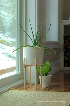 Your Guide to modern plant stand and pot exclusive on nyhomesinc.com