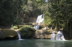 Black River Safari, YS Falls and Appleton Rum Factory Tour from Ocho Rios Set out from Ocho Rios to explore the pristine south coast of Jamaica on this exhilarating nature tour that includes visits to the Black River and YS Falls. Travel through stunning countryside en route to the Black River, then take a boat cruise with a knowledgeable guide who shares informative commentary about plant and animal life on the river. Cool off at YS Falls before touring the Appleton Estate Ru...
