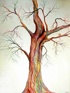 Colored pencil drawing of tree. Drawing Sketches, Pencil Drawings, Art Drawings, Pencil Trees, Color Pencil Art, Human Art, Colored Pencils, Art Inspo, Fine Art America