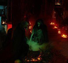 Pumpkinrot Halloween | Season of