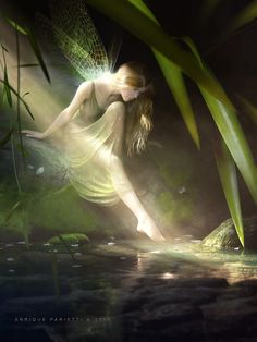 Fairy by Epar3D.deviantart.com on @deviantART