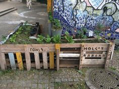 *** urban kraut's #GreenFavs ***                       Holger's #urbangarden seen @ Helmholtzplatz, #Berlin #urbangardening #urbankraut