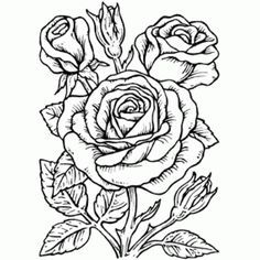 simple rose outline drawing - Google Search | Tattoos | Pinterest | Drawings, Outline drawings ...