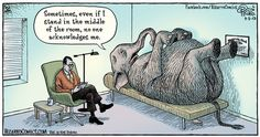 Elephant in the room....