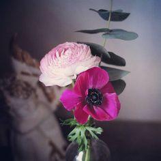 Loveflowers