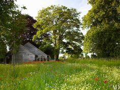 An ornamental meadow in England is enriched with poppies, cornflowers, alliums, and tulips. The Magical Garden Landscapes of Jinny Blom Photos Wild Flower Meadow, Wild Flowers, Farm Gardens, Outdoor Gardens, Pasto Natural, Meadow Garden, British Garden, Into The West, Garden Types