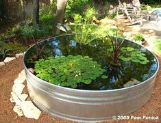 great garden pond idea made from a stock tank. don't have the tank but do have a round formal fountain that I've converted into a koi/goldfish pond. just need the water plants. Container Pond, Container Gardening, Container Water Gardens, Mini Pond, Stock Tank, Ponds Backyard, Garden Ponds, Outdoor Fish Ponds, Outdoor Fountains