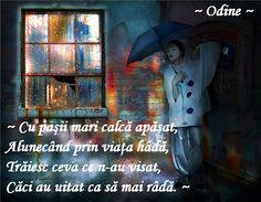 ~ Casa fisurată ~