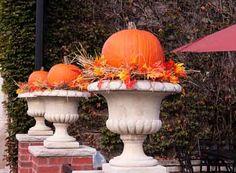 Pumpkin-Planter11