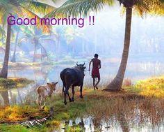 Good morning # Passion Tourism # Kerala travels # tourism India # holidays to Kerala