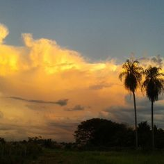 Sunset 14.04.15 17:20pm Sem Filtro ❤ #Sunset #Pretty #Beautiful #Nature #NoFilter #Clouds #Sky #Céu #Sol #PorDoSol #Brazil #MatoGrossoDoSul #Amazing #Grace #Natureza #Landscape #handsome #places #World #Travel #Trees #Explosion #Hot #Deus #Eternidade #Lindo #Paradise #Criation  #freedom #Garden (em Rio Brilhante M.S.)