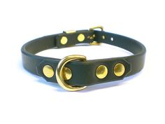 "5/8"" Black Bridle Leather BDSM Collar - 5/8"" Brass Dee Ring, Dbl Rivets"