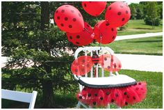 Party Feature Week – Ladybug Birthday Party | A to Zebra Celebrations