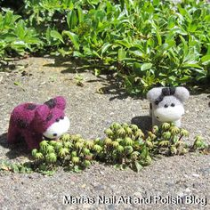 The Moo Moos cheered and laughed out loud when they saw these super tiny plants (1-2 cm) and agreed that they would be perfect for the upcoming movie Moorassic World, when Sparkly and Molly (the stars in the movie) grow super powers and size to protect us and the rest of the world :D