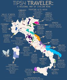 Our Tipsy Traveler tours the wine regions of Italy!