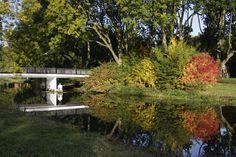 Autumn Utrecht 2015 reflection water colors tree