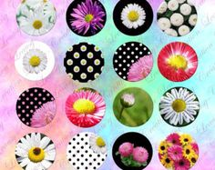flowers in background black and white polkat-dot,1 inch round, cabochon printable, Printable Images, Crafts, digital download cabochon, .  Digital collage sheet for you to download and print as many times as you want, and use for crafting projects, jewelry, card making, magnets, stickers, scrap books, hang tags, and other paper crafts.  Description : - 1inch circles - 28 differents images -63 images per page (US letter 8,5x11 inches)  >> Other circles sizes would be available on demand ...