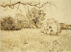 Vincent van Gogh 1888+Field+of+Grass+with+a+Round+Clipped+Shrub+pencil,+pen+&+ink+on+paper