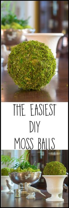 Decorative Moss Balls Adorable Textured Moss Ball Diy  Pinterest  Store Craft And Crafty Inspiration Design