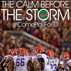 Go Gators! Sports Fanatics, Calm Before The Storm, University Of Florida, Florida Gators, Football, Board, Soccer, Futbol, Gym Rat