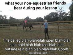 blah blah blah Horse Supplies, Horses, Funny, Animals, Animales, Animaux, Funny Parenting, Animal, Animais