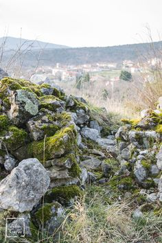 Muretto in pietra carsica con Slivia (TS) sullo sfondo // Typical old wall and the village of Slivia in the background