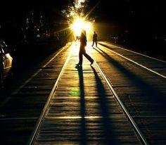 shadows-11