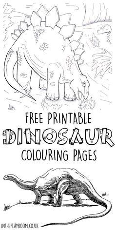 1000 images about DINOSAUR THEME on Pinterest Dinosaurs