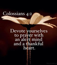 Colossians 4:2 | Devote yourselves to prayer with an alert mind and a thankful heart.