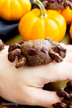 Vegan Halloween Spider Treats (V, Paleo, Gluten Free, Dairy Free)