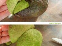 avocado-peel