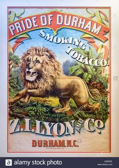 Old poster for smoking tobacco at the Duke Homestead and Tobacco Museum, Durham, North Smoking Accessories, Durham, Old Pictures, Duke, Homestead, North Carolina, Nostalgia, Museum, Stock Photos