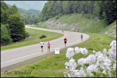 The amazing scenery is just one reason Competitor Magazine ranks God's Country one of the 25 Great American Half Marathons!