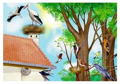 Spring Pictures, Stork, Bird Feeders, Coloring Books, Christmas Cards, Preschool, Birds, Seasons, How To Plan