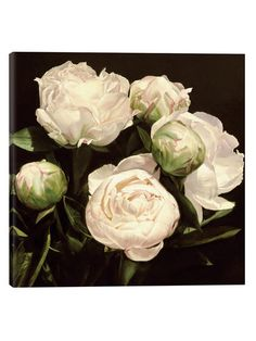 Peonies Circle by Thomas Darnell (Canvas) by iCanvas at Gilt