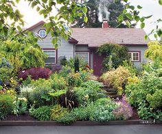 Front Yard: No lawn - hurrah! Lovely!