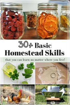 Are you homestead dreaming? That dream might be closer than you think! Find out what homestead skills you can start practicing NOW, no matter where you are! #homestead #homesteadskills