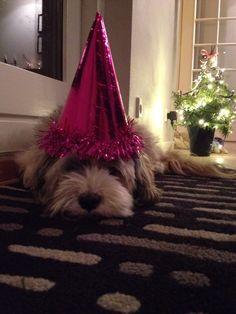 2015... Happy new year❤️❤️