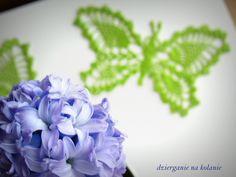 Dziergany motyl + hiacynt/ Doily butterfly and hyacinth https://www.facebook.com/dzierganienakolanie?ref=hl