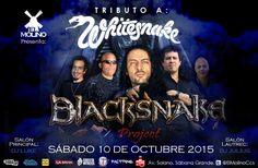"El Molino presenta: ""BlackSnake Project – Tributo a WhiteSnake"" http://crestametalica.com/events/el-molino-presenta-blacksnake-project-tributo-a-whitesnake/ vía @crestametalica"