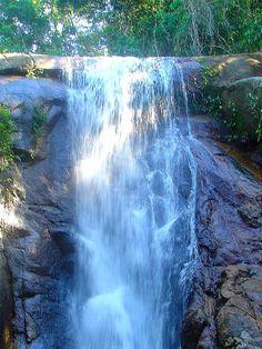 Cachoeira da Feiticeira - Ilha Grande - Rio de Janeiro - Brasil Beautiful Places To Travel, Wonderful Places, Cristo Corcovado, Places Around The World, Around The Worlds, Parque Natural, Beyond The Sea, Brazil Travel, Travel Route
