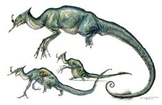 Terryl Whitlatchs - Google Search Alien Creatures, Fantasy Creatures, Creature Feature, Creature Design, Terryl Whitlatch, Star Wars Characters Pictures, Monster Book Of Monsters, Alien Concept Art, Creature Concept