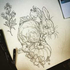 Instagram media by davidlegoon - Rabbit up for grabs :) mustard flower also available. Please email davidlegoon gmail.com to book in