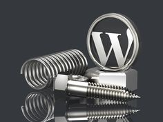 Selecting The Ideal Wordpress Themes And Plugins For Your Website | E-Services India