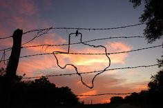 Texas sunset