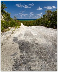 En route to the beach on White Road, on the Atlantic side just north of Tarpum Bay. Eleuthera Bahamas, Wells, Genealogy, Spanish, Shots, Country Roads, Island, Beach, Travel