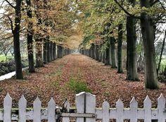 Amersfoort, The Netherlands. Coelhorst scenery.