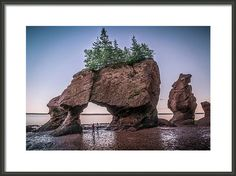 https://fineartamerica.com/products/low-tide-at-hopewell-rocks-mike-organ-framed-print.html